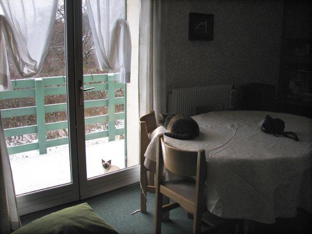 hiver02.jpg